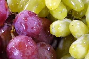 опрыскивание винограда коллоидной серой