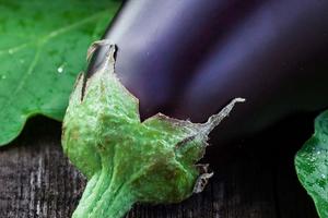 белый налет на листьях баклажана лечение